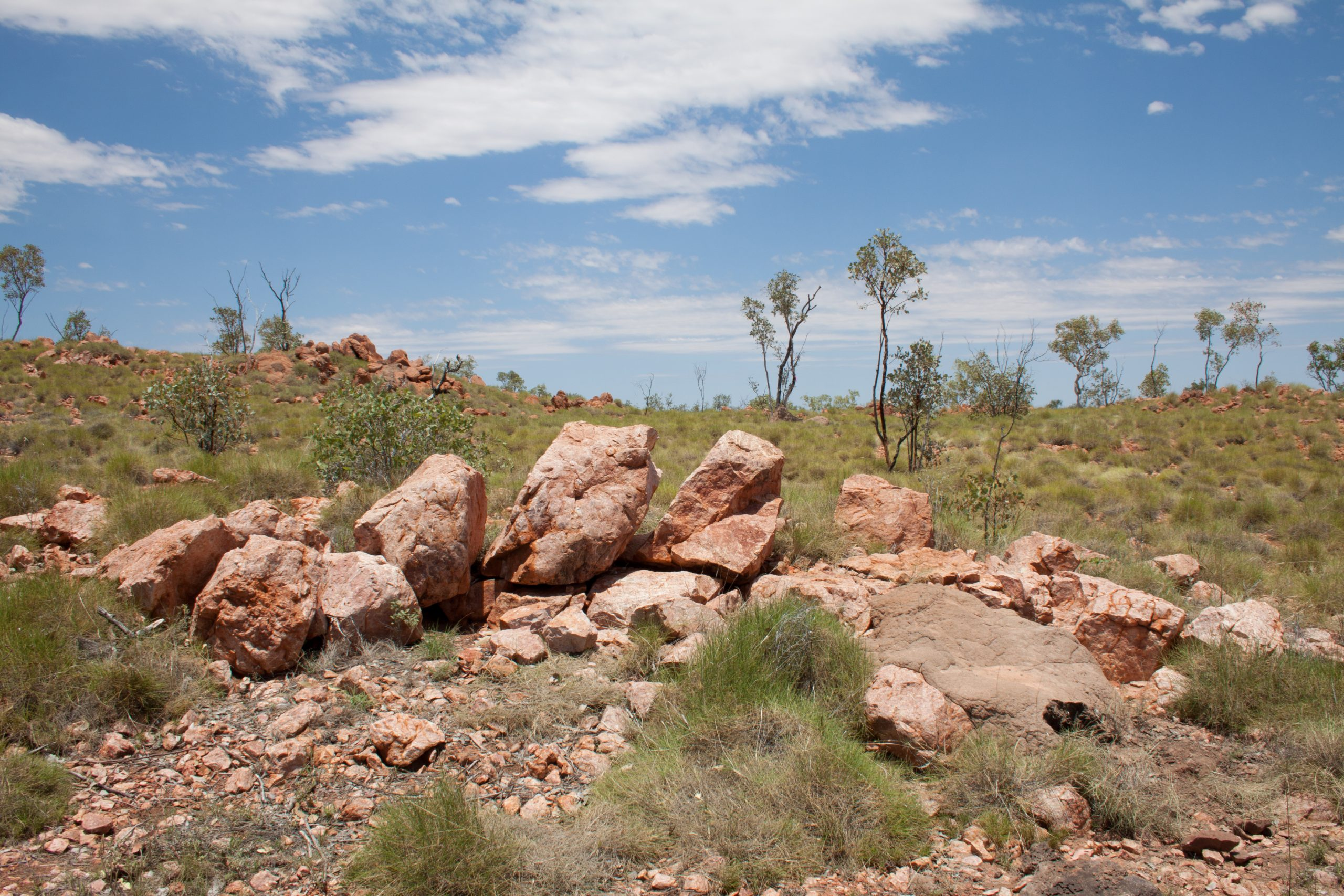 Cannings Purple Northern Minerals case study